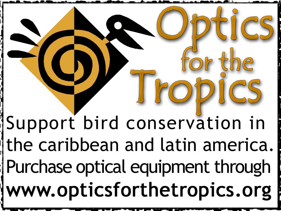 Optics for the Tropics